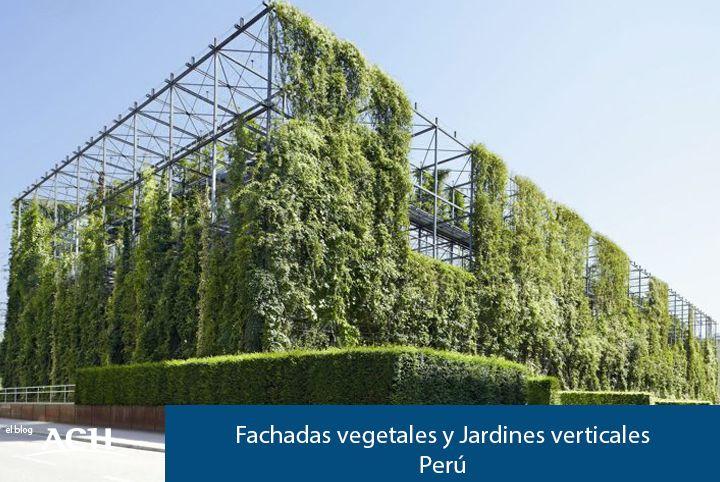 FACHADAS VEGETALES Y JARDINES VERTICALES EN PERÚ